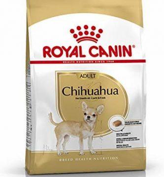 royal canin chihuahuas