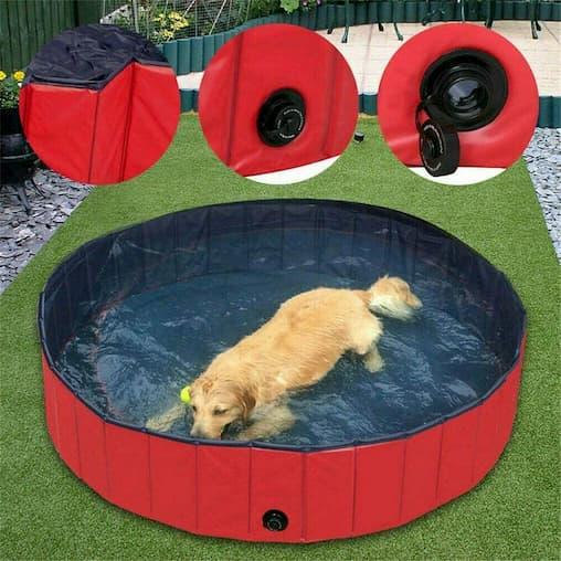 piscinas para perros pequeños